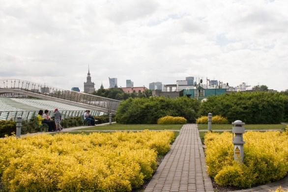 35_Dachgarten5