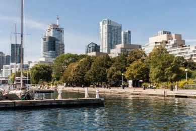 Bild 7 Toronto Harbourfront im Grünen