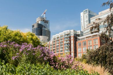 Bild 8 Toronto Harbourfront Music Gardens